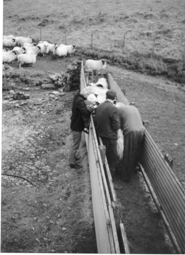 Ardchyline Farm Fank