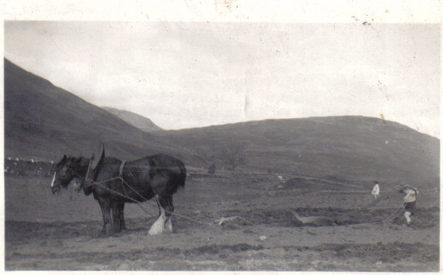 Ploughing Upper Succoth, Armstrong Children