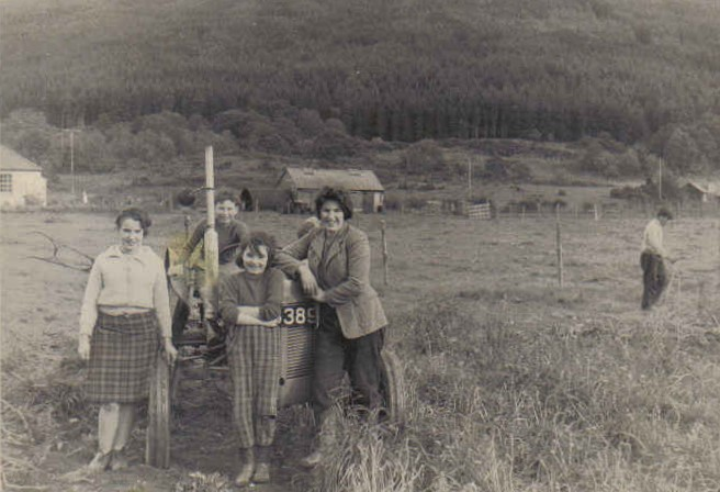 Tattie Picking, Balliemeanach