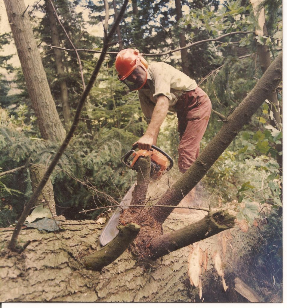 Forestry Worker